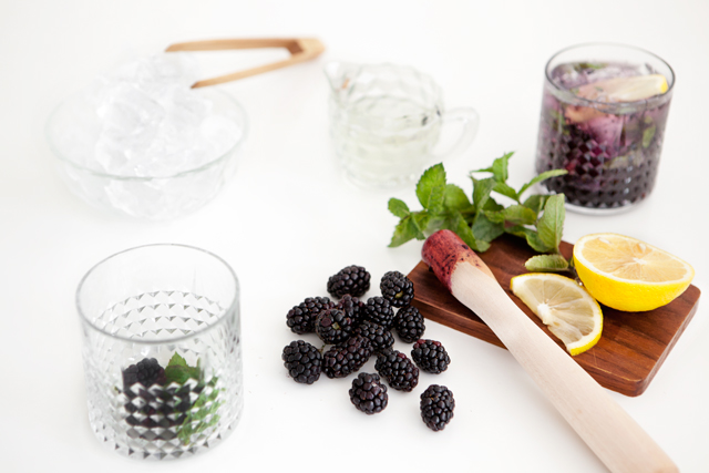 Blackberry Gin And Tonic Recipe — Dishmaps