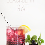 Blackberry Gin & Tonic