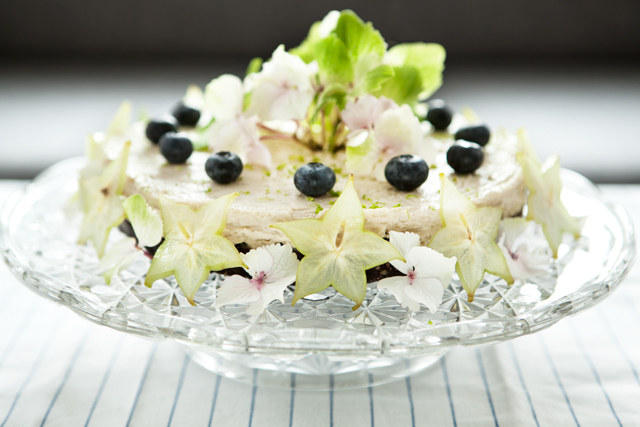 RAW Blueberry Lime Cake